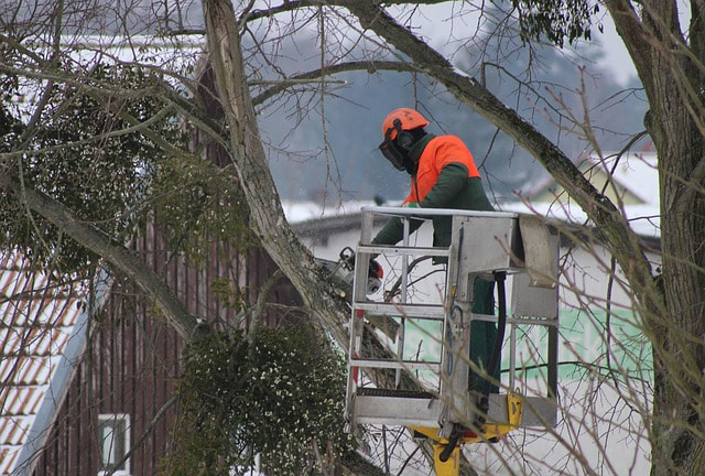 An emergency situation being handled by an arborist in a crane with a chainsaw